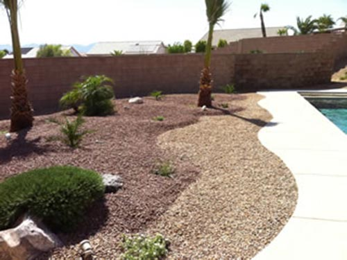 pool landscaping north view