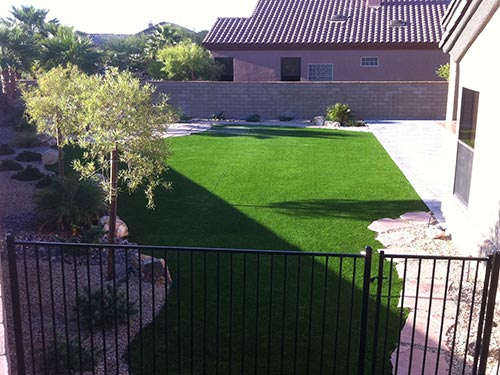 new lawn landscaping